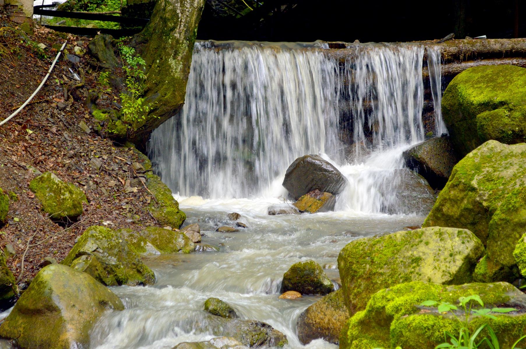 С нашей поездки на водопад 7 красавиц!
